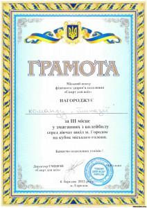 86655473 212x300 - Змагання з волейболу серед дівчат шкіл міста