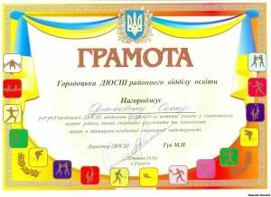 95348031 300x218 - Грамота ДЮСШ