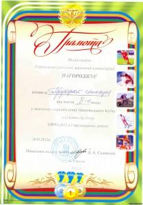 50888003 209x300 - Національний Кубок шкільного футболу ЕВРО-2012
