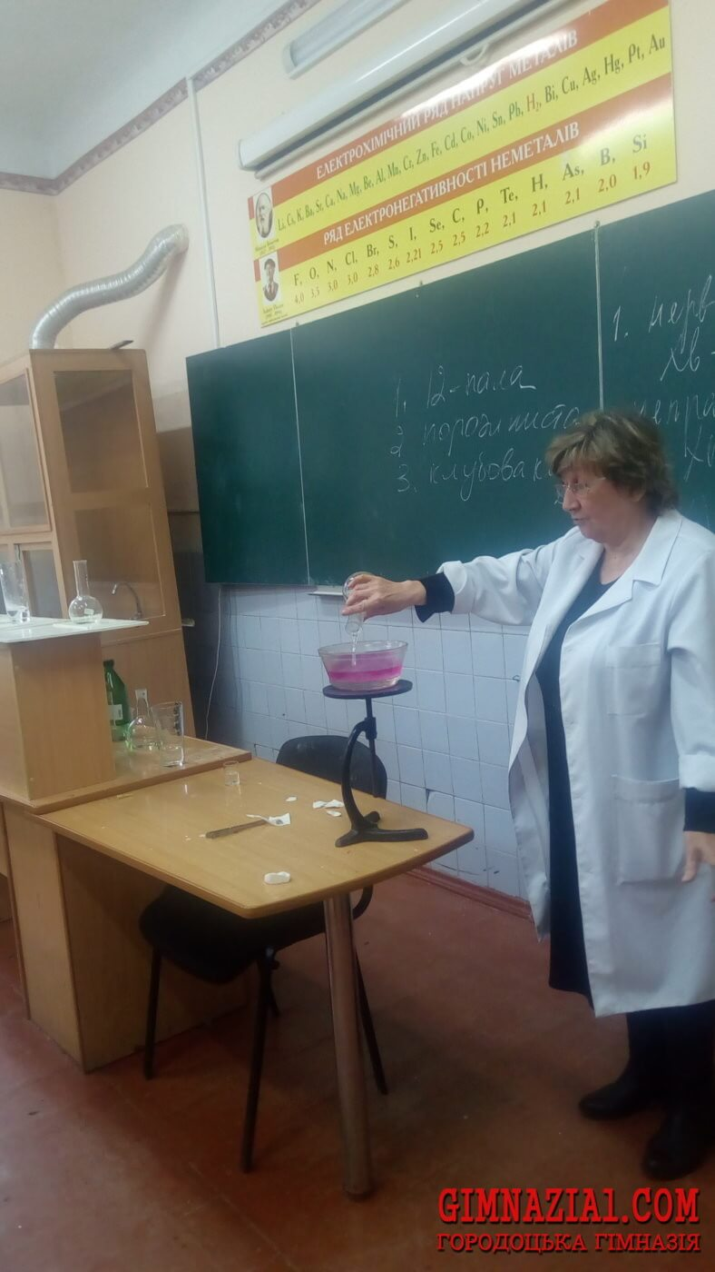 IMG 20171123 145022 788x1400 - Тиждень хімії у Городоцькій гімназії