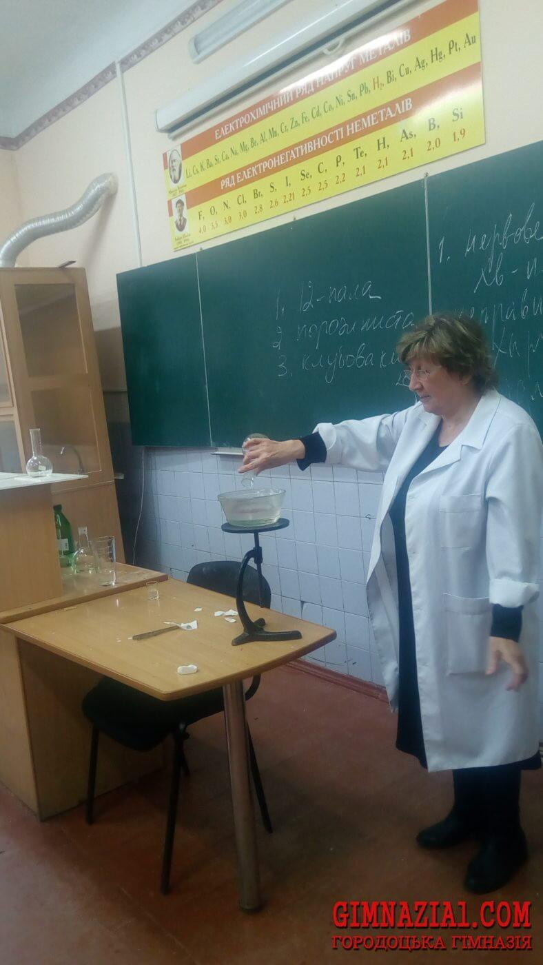 IMG 20171123 145024 788x1400 - Тиждень хімії у Городоцькій гімназії